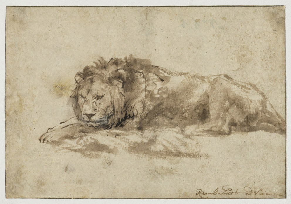 Rembrandt Lion Sketch, 1650-59