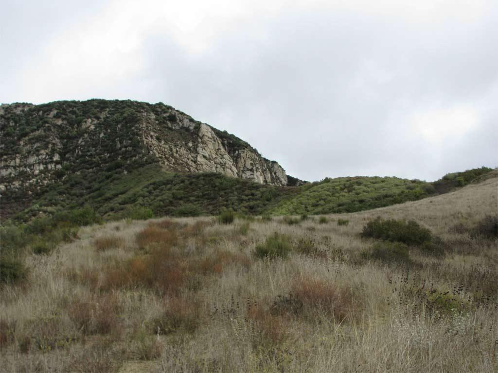 A Walk in the Hills Santa Barbara County