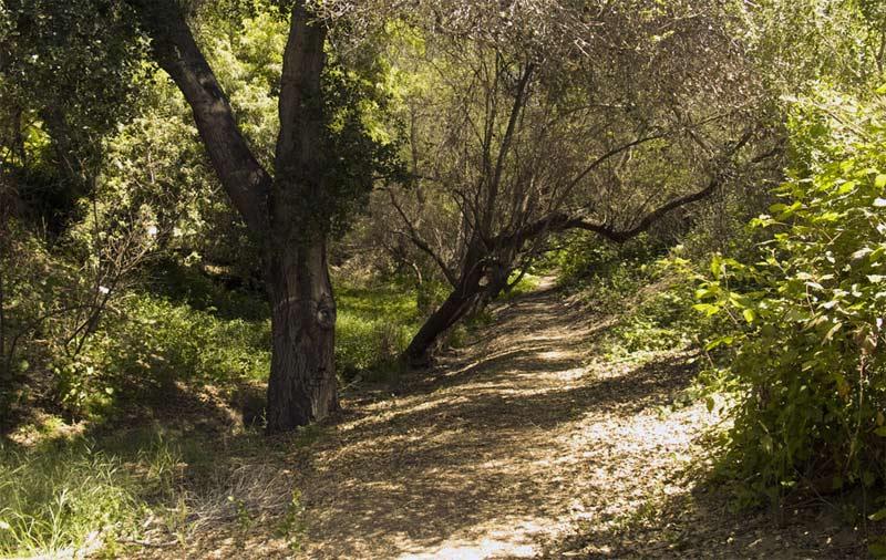 Santa Barbara County walking Trail