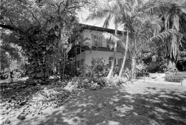 Ernest Hemingway museum, Key West, Florida